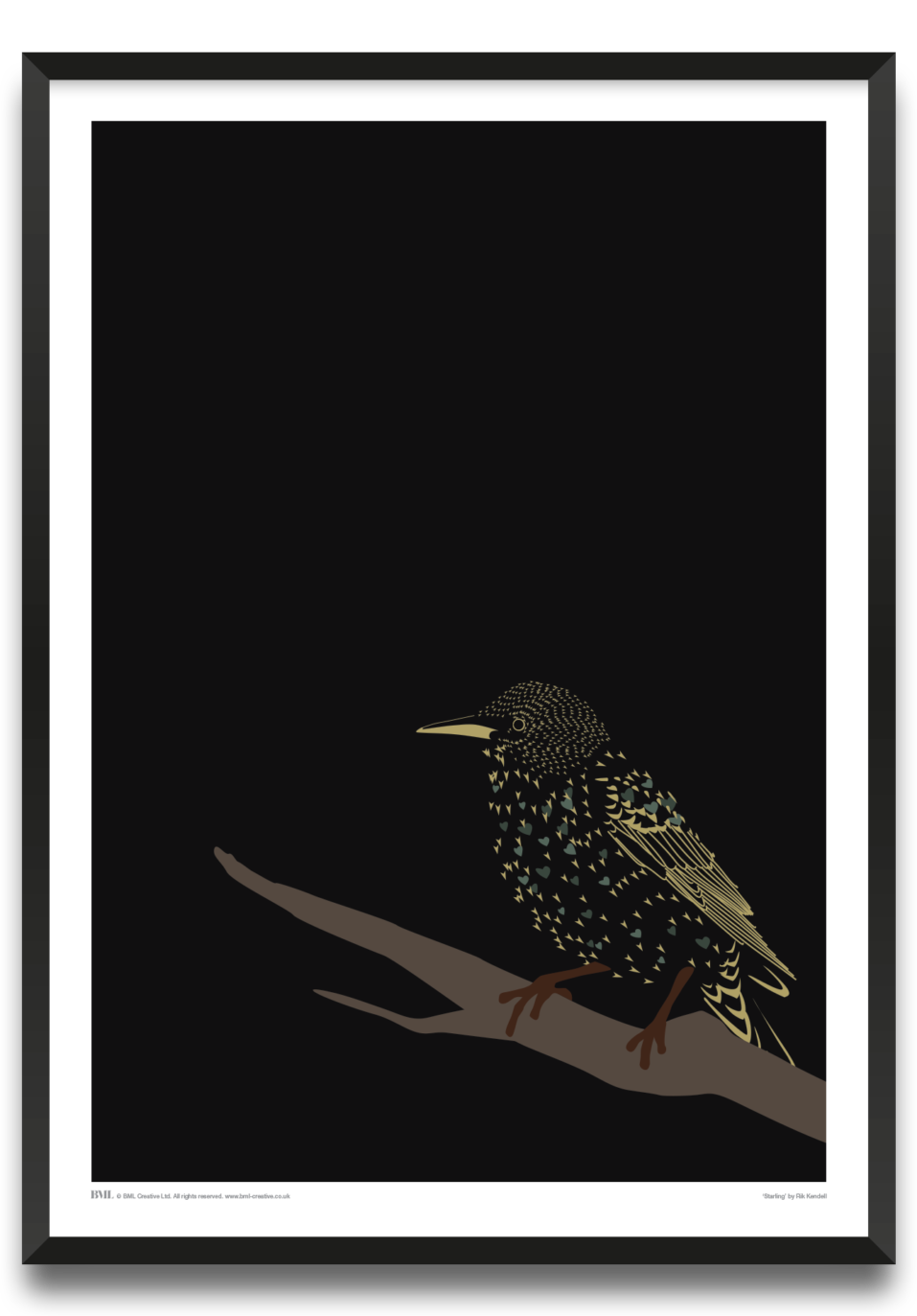 Starling, bird art print by Rik Kendell, Prints for Charity